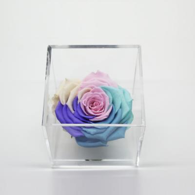 Cubo Acrílico con Rosa multicolor pastel