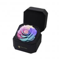 Cofre con rosa preservada multicolor
