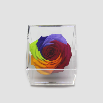 Cubo Arco Iris